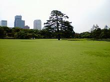 東御苑2.jpg